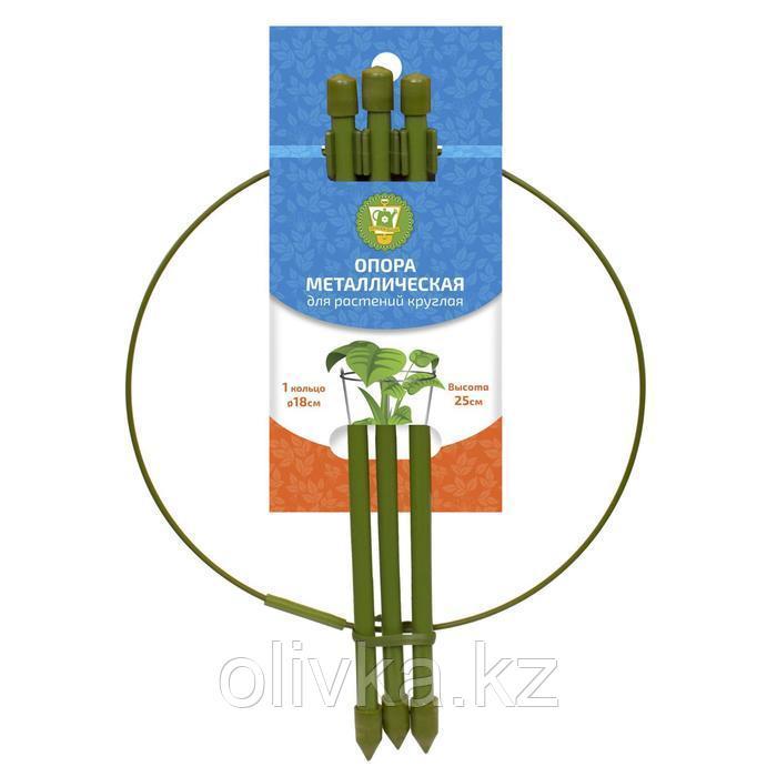 Опора для растений, 1 кольцо, h = 25 см, d = 18 см, металл