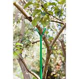 Опора для ветвей, h = 200 см, d = 1.6 см, металл, зелёная, фото 4