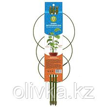 Опора для растений, 3 кольца, h = 45 см, d = 18-16-14 см, металл