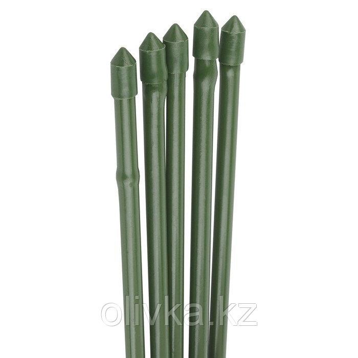 Колышек для подвязки растений, h = 90 см, d = 0.8 см, набор 5 шт., металл в пластике, «Бамбук»