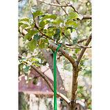 Опора для ветвей, h = 160-280 см, ножка d = 1,6 см, металл, зелёная, фото 5