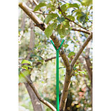 Опора для ветвей, h = 160-280 см, ножка d = 1,6 см, металл, зелёная, фото 6