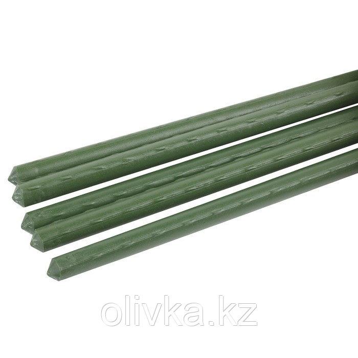 Колышек для подвязки растений, h = 180 см, d = 0,8 см, набор 5 шт., металл в пластике