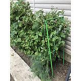Промежуточная опора для малины, 150 × 48 × 1,5 см, зелёная, фото 4