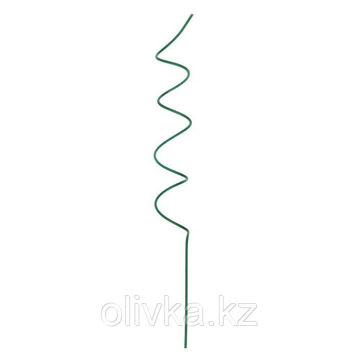 Кустодержатель для цветов, d = 5 см, h = 50 см, металл, зелёный, «Спираль»
