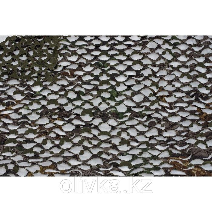 Маскировочная сеть «Пейзаж. Тайга 4D», 2,4 × 6 м, тёмно-зелёная/тёмно-коричневая/чёрная