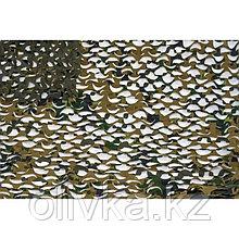 Маскировочная сеть «Пейзаж. Лес 3D», 2,2 × 6 м, зелёная/коричневая