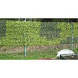 Маскировочная сеть «Экон М-Профи», 1,5 × 3 м, на сетевой основе, зелёная/коричневая, фото 5