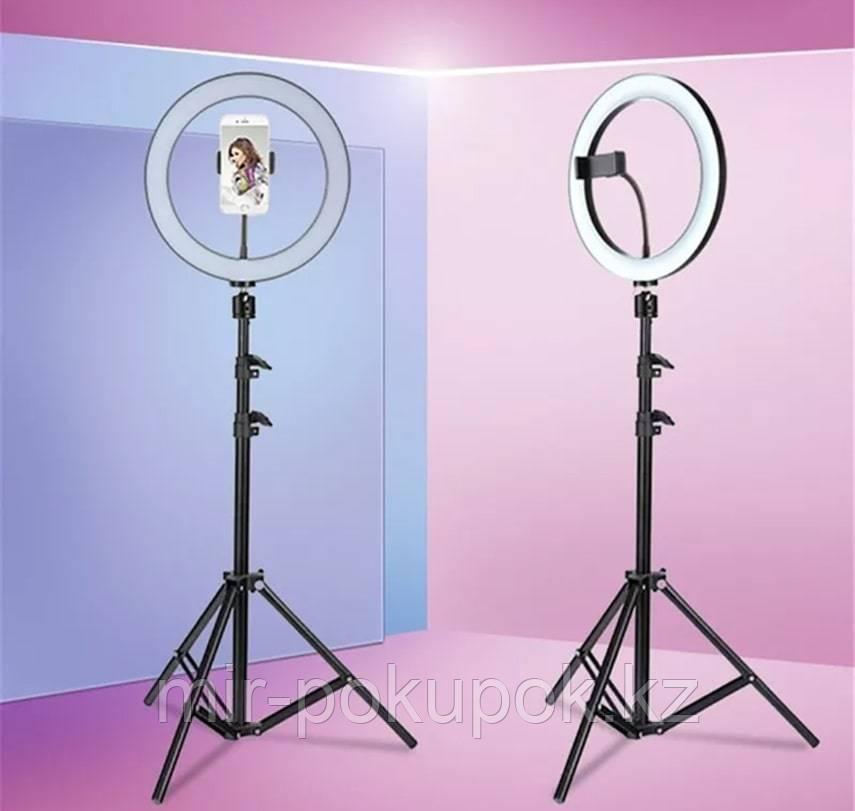 Кольцевая лампа LED 25 см со штативом и держателем для смартфона