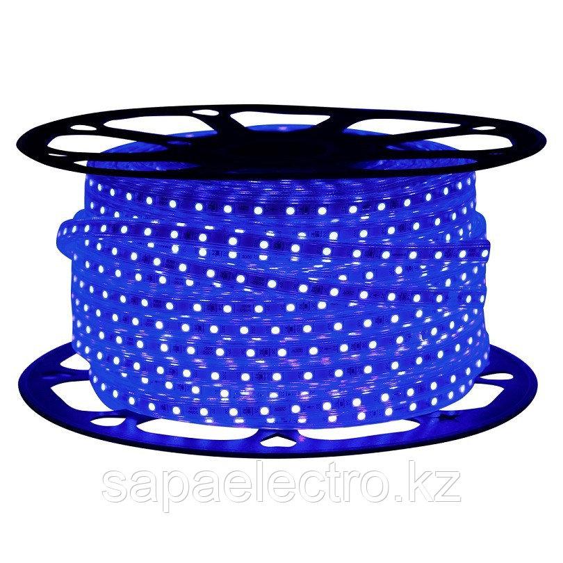 LED Lentа 2835/60L 220V BLUE IP65 (TEKLED) 100m