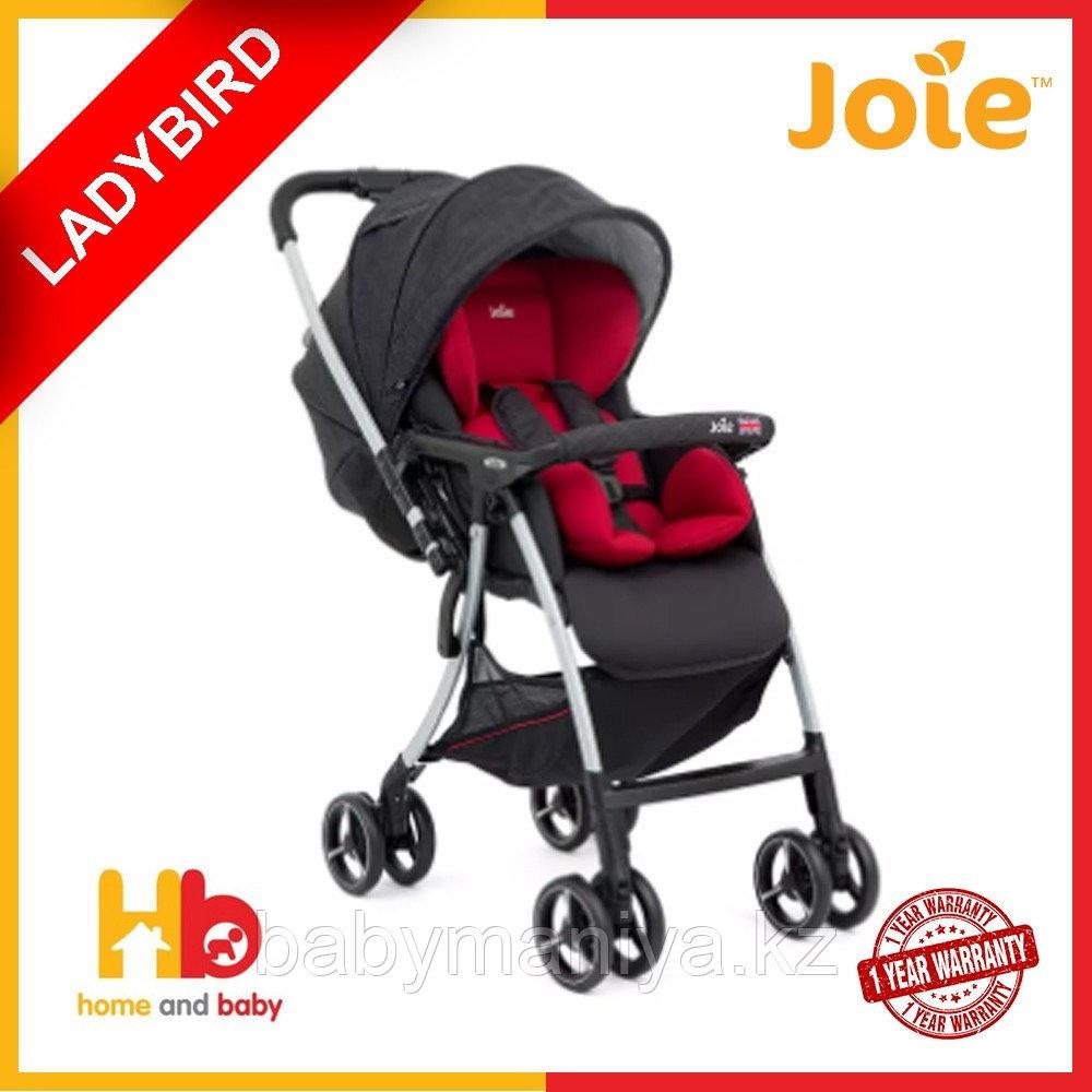 Коляска прогулочная Joie Sma Baggi 4WD Lady Bird