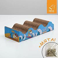 Когтеточка из гофрокартона с кошачьей мятой в пакетике «Лови волну», фото 1
