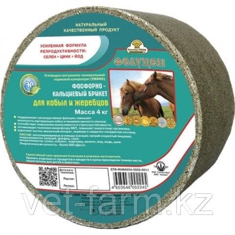 Фелуцен-Лизунец для кобыл и жеребцов 4 кг