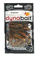 Наживка DYNABAIT Grasshoppers hg-03533