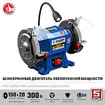 Профессиональный заточной станок ЗУБР, d150 мм, 300 Вт (ПСТ-150), фото 3