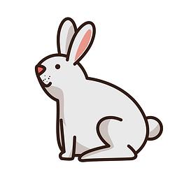 Товары для Грызунов и Кроликов