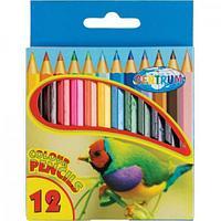Карандаши цветные наточенные Centrum ZOO, длина 88 мм, 12 цв., картон. упаковка