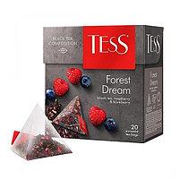 Чай TESS Forest Dream черный, пирамидки, 1,8гр*20 пак