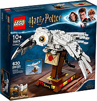 LEGO 75979 Букля Harry Potter, фото 1