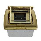 Shelbi Напольный/настольный лючок на 3 модуля, металл, золото, фото 5