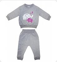 Комплект для девочки (свитшот, брюки) Серый