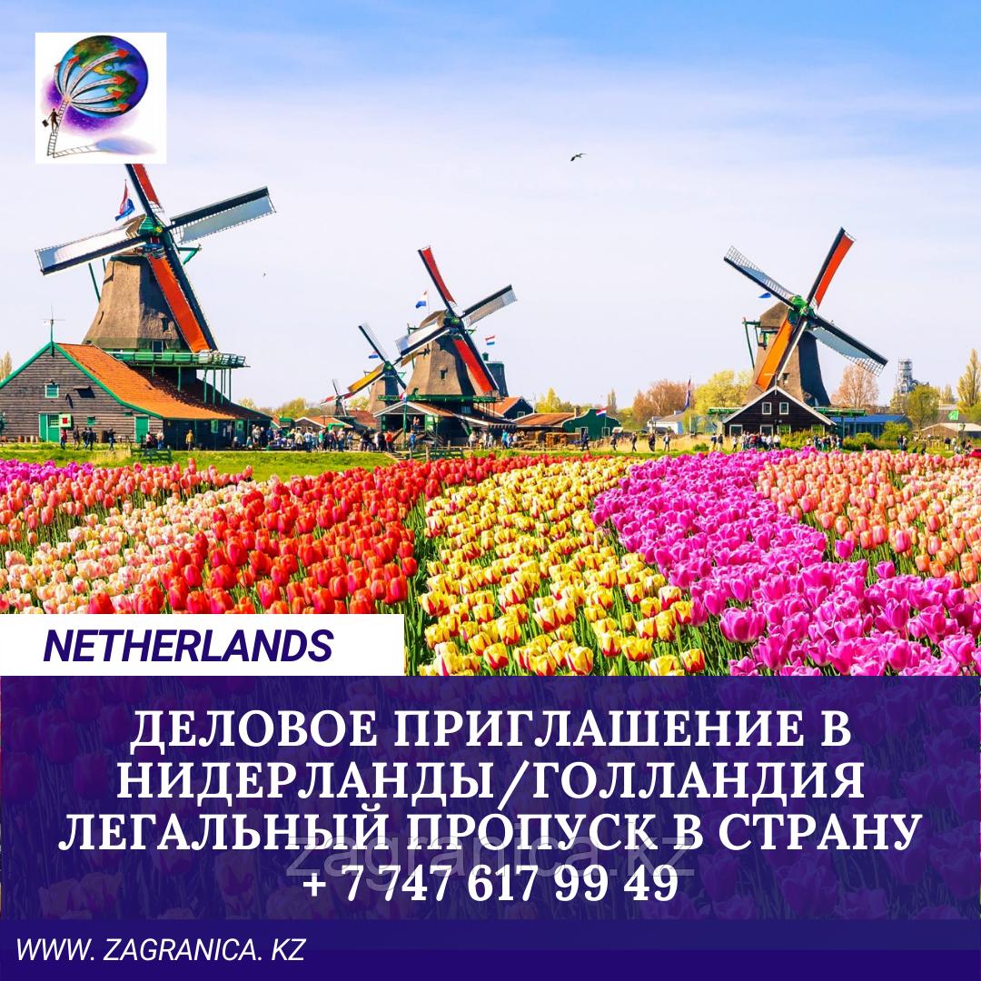 Деловое приглашение в Нидерланды