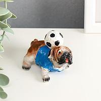 """Сувенир полистоун """"Английский бульдог с футбольным мячом"""" 6,5х8х5 см"""