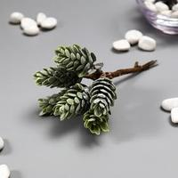 Искусственный суккулент для создания флорариума 'Столетник цветной' набор 6 шт 13 см (комплект из 6 шт.)