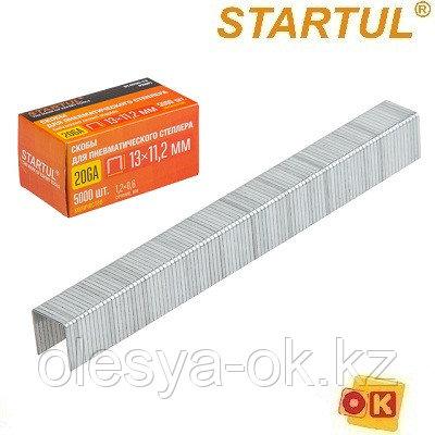 Скобы тип 20GA/53F 13мм (5000шт) STARTUL PROFI