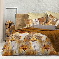 Wenge Комплект постельного белья  Foxy,  WENGE, 2 спальный евро