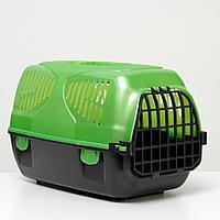"Переноска для животных ""Сириус"" 33,5 х 31 х 50 см, цвет зеленый перламутр, фото 1"