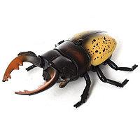 Игрушка-жук на радиоуправлении Best Fun Toys 9996e-f