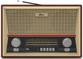 Радиоприемник портативный Ritmix RPR-102 buk
