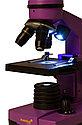 Микроскоп Levenhuk Rainbow 2L Amethyst\Аметист, фото 7