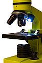 Микроскоп Levenhuk Rainbow 2L Lime\Лайм, фото 6