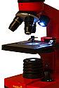 Микроскоп Levenhuk Rainbow 2L Orange\Апельсин, фото 6