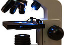 Микроскоп Levenhuk Rainbow D2L, 0,3 Мпикс, Moonstone\Лунный камень, фото 3