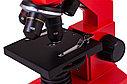 Микроскоп Levenhuk Rainbow 2L PLUS Orange\Апельсин, фото 5