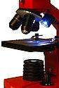 Микроскоп Levenhuk Rainbow 2L PLUS Orange\Апельсин, фото 7