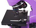Микроскоп Levenhuk Rainbow 50L PLUS Amethyst\Аметист, фото 5