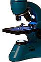 Микроскоп Levenhuk Rainbow 50L PLUS Azure\Лазурь, фото 7