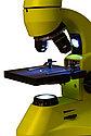 Микроскоп Levenhuk Rainbow 50L PLUS Lime\Лайм, фото 7