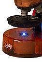 Микроскоп Levenhuk LabZZ M101 Orange\Апельсин, фото 8