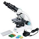 Микроскоп Levenhuk 400B, бинокулярный, фото 2