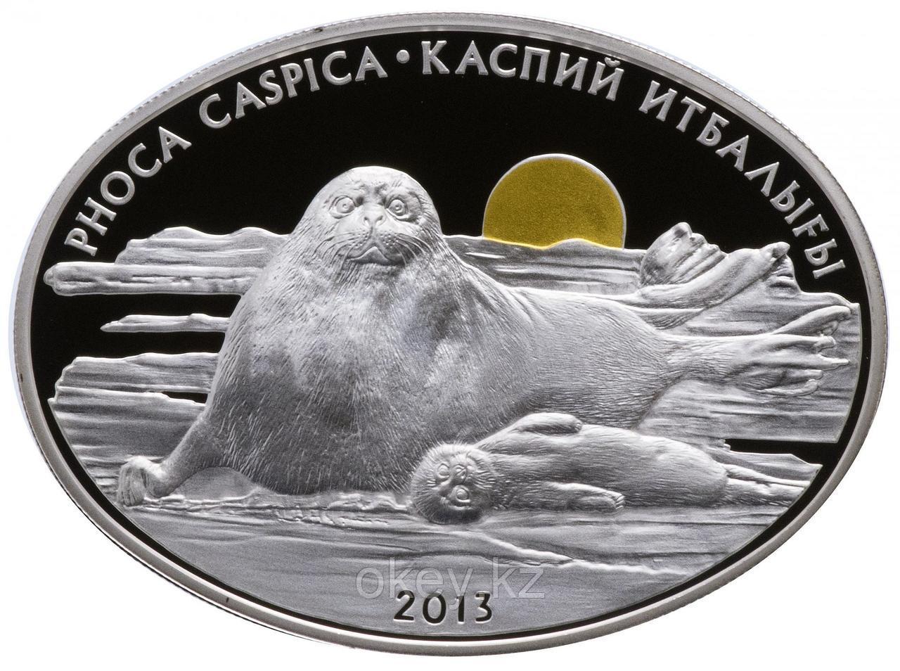Серебряная монета «Каспийский тюлень» из серии монет «Фауна и флора Казахстана», 500 тенге, качество proof