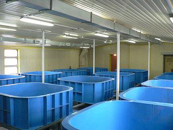 Емкости для разведения и транспортировки рыбы