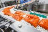 Смазка.ру Водостойкая пластичная смазка X-Food 3017-2/3 с пищевым допуском, картридж 400 мл, фото 4