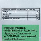 Картофельная формула, удобрения для картофеля, 1кг, фото 3