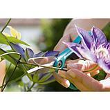 """Ножницы садовые, 7"""" (18 см), пластиковые ручки, Шнип-Шнап, фото 5"""