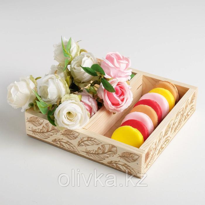 Ящик-кашпо подарочный «Перья», 2 ячейки, 20 × 20 × 4,5 см